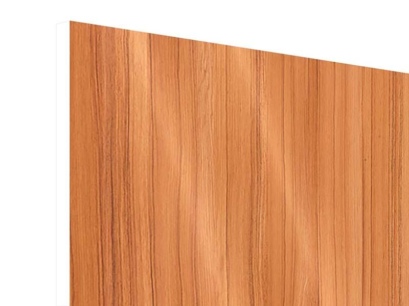 Hartschaumbild Holzchalet