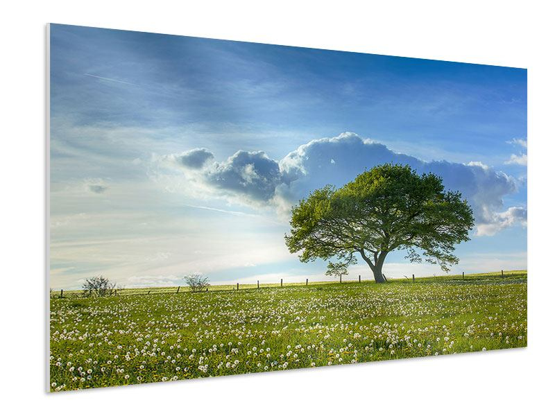 Hartschaumbild Frühlingsbaum