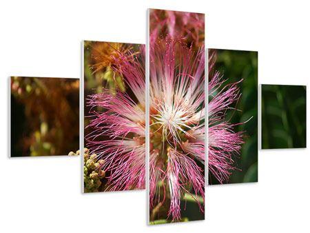 Hartschaumbild 5-teilig Die Regenbaumblüte