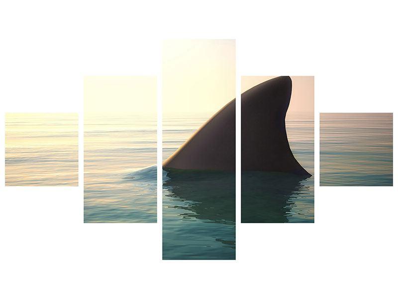 Hartschaumbild 5-teilig Haifischflosse