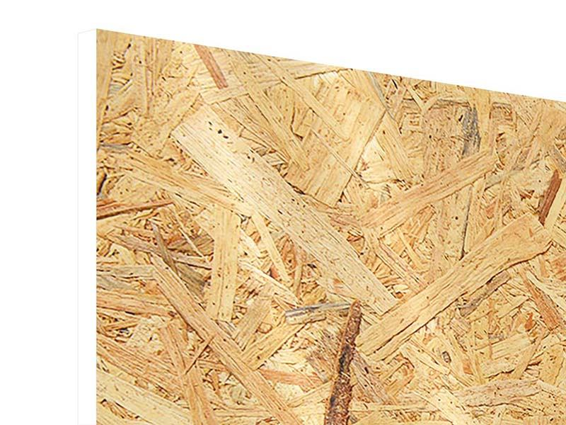 Hartschaumbild 5-teilig Gepresstes Holz