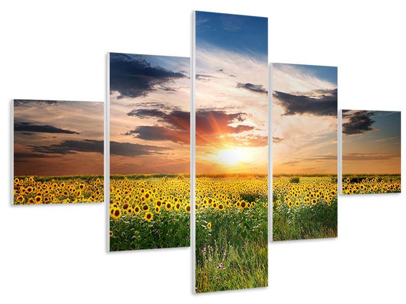Hartschaumbild 5-teilig Ein Feld von Sonnenblumen