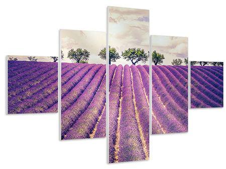 Hartschaumbild 5-teilig Das Lavendelfeld