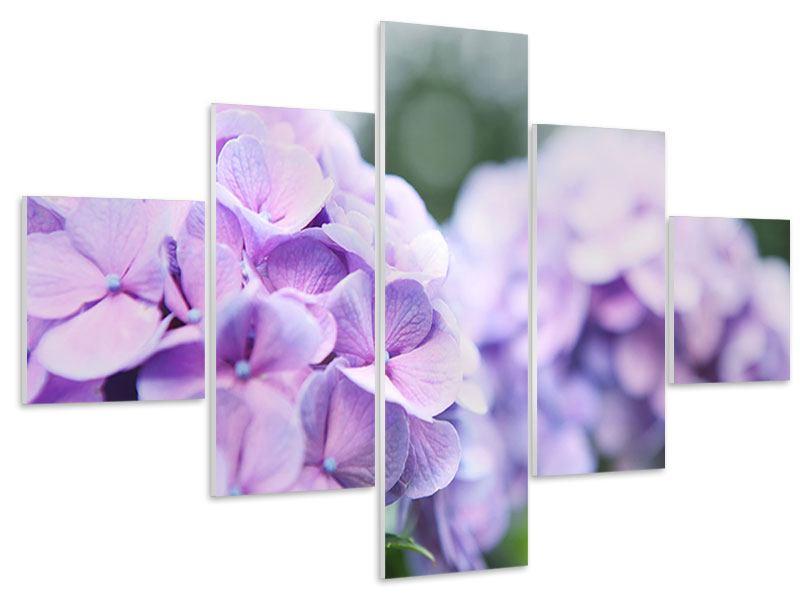 Hartschaumbild 5-teilig Hortensien