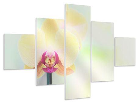 Hartschaumbild 5-teilig Lovely Orchidee