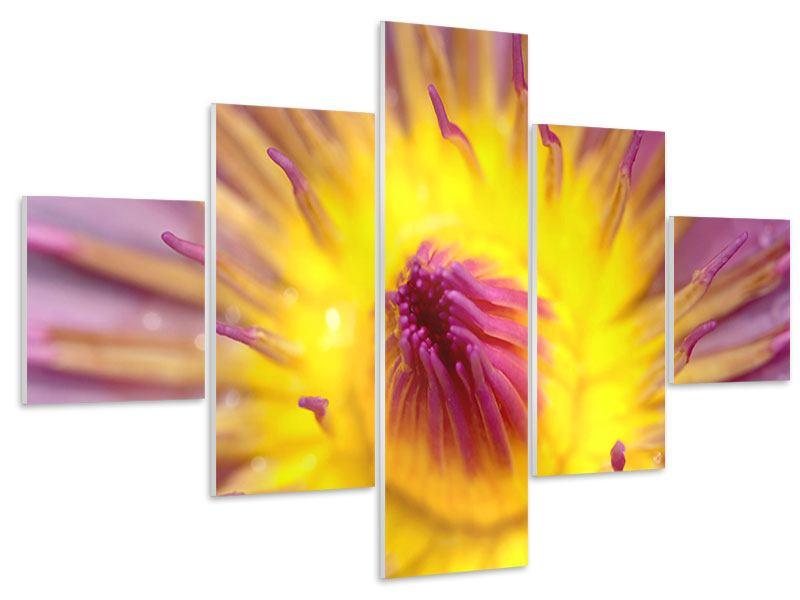 Hartschaumbild 5-teilig XXL-Lotus