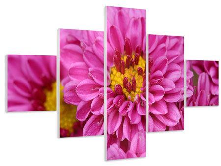 Hartschaumbild 5-teilig Chrysanthemen