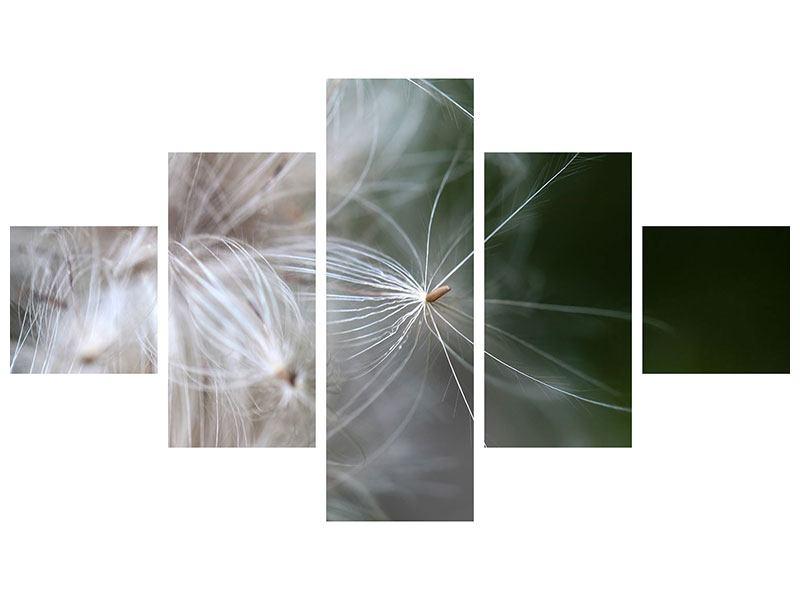 Hartschaumbild 5-teilig Close up Blütenfasern