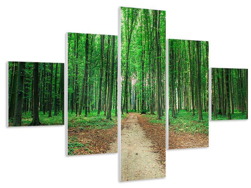 Hartschaumbild 5-teilig Tannenwald