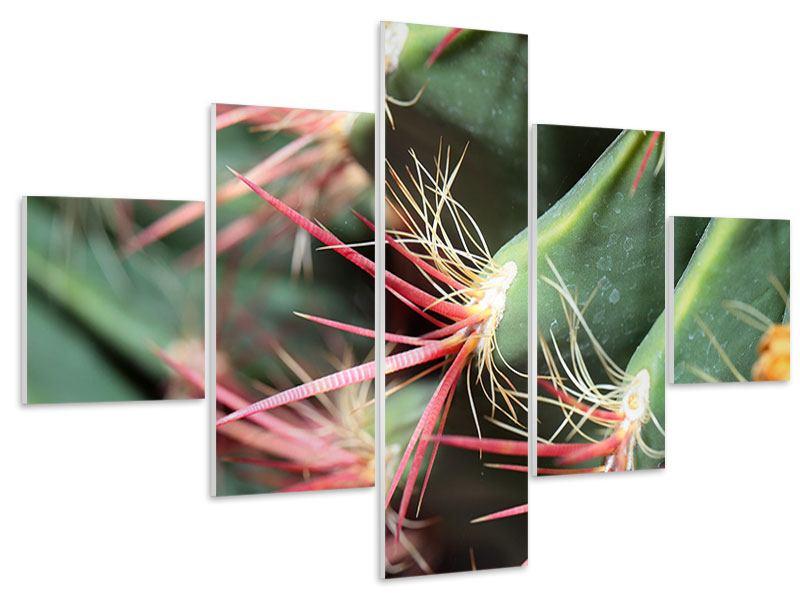 Hartschaumbild 5-teilig Die Kaktusblüte