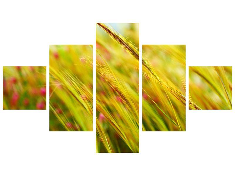 Hartschaumbild 5-teilig Das Weizenfeld