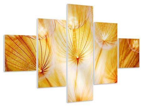 Hartschaumbild 5-teilig Close Up Pusteblume im Licht