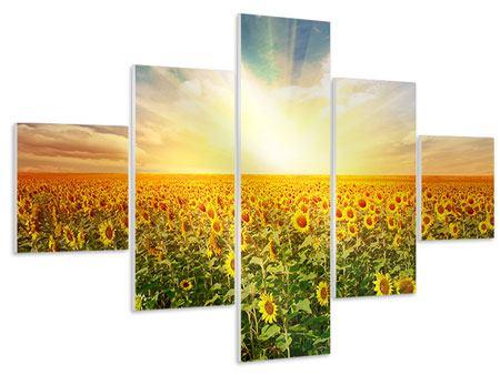 Hartschaumbild 5-teilig Ein Feld voller Sonnenblumen