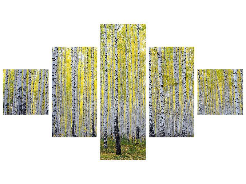 Hartschaumbild 5-teilig Herbstlicher Birkenwald