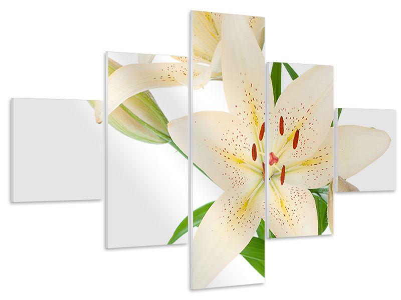 Hartschaumbild 5-teilig Weisser Lilienstrauch