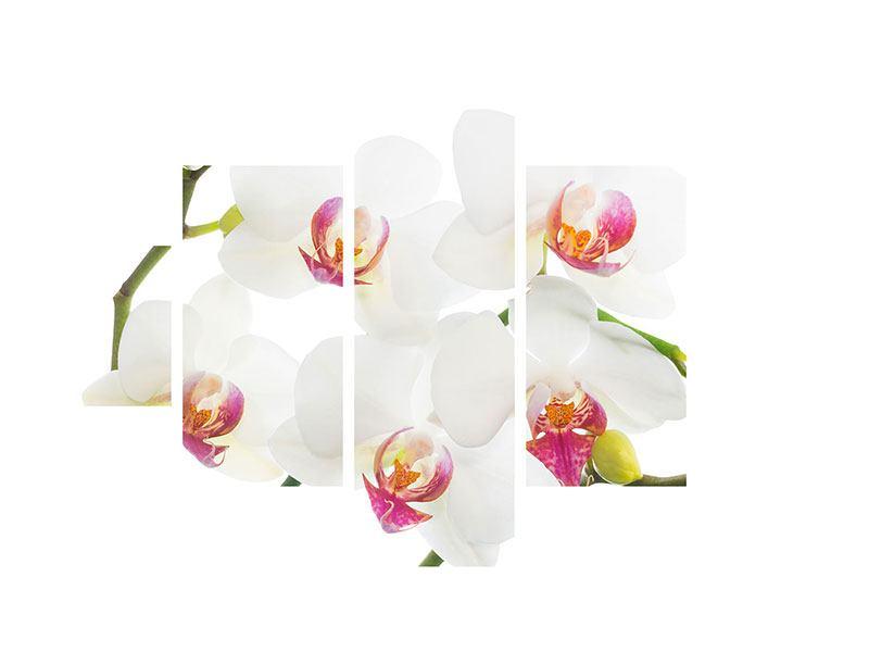 Hartschaumbild 5-teilig Orchideenliebe