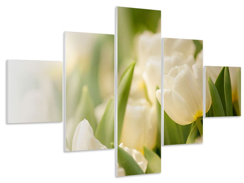 Hartschaumbild 5-teilig Tulpenperspektive