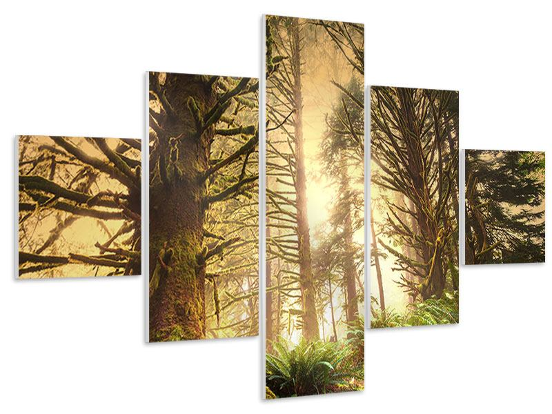 Hartschaumbild 5-teilig Sonnenuntergang im Dschungel