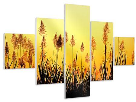 Hartschaumbild 5-teilig Die Blumen des Feldes