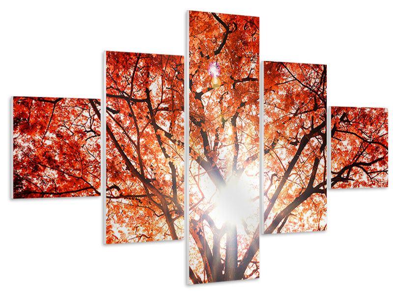 Hartschaumbild 5-teilig Herbstlicht