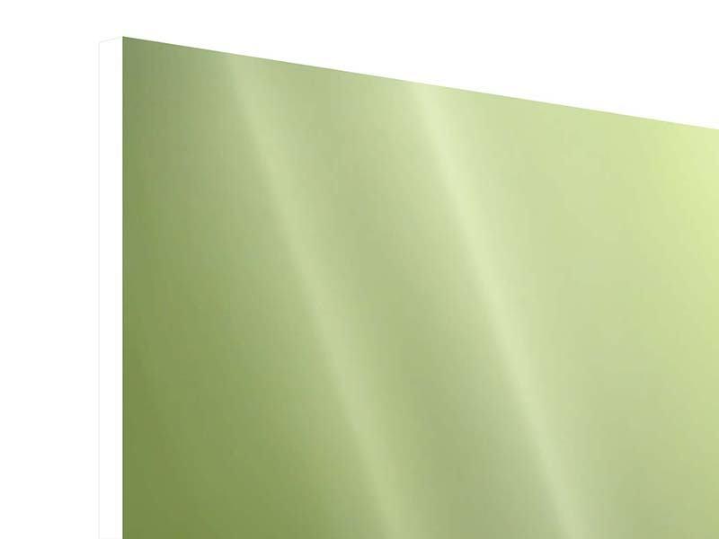 Hartschaumbild 5-teilig Pusteblume XL im Morgentau