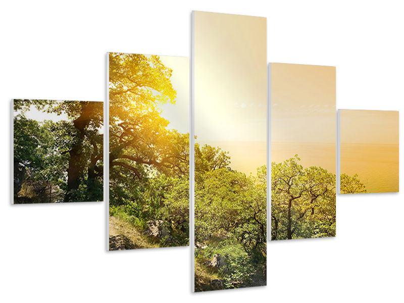 Hartschaumbild 5-teilig Sonnenuntergang in der Natur