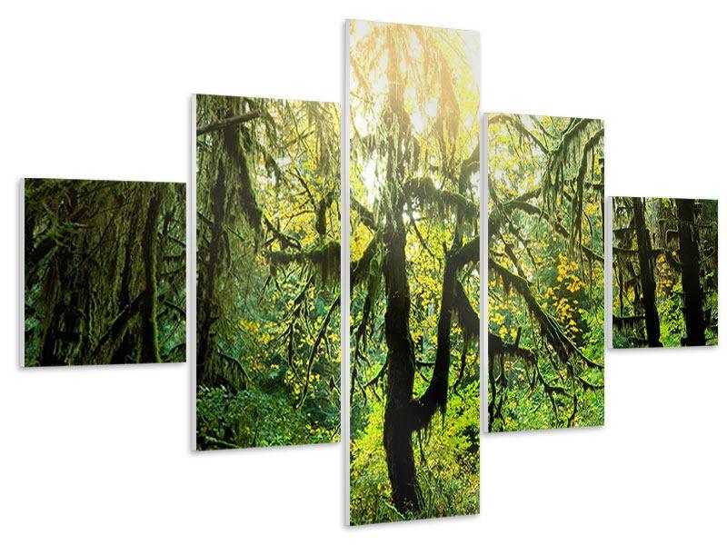 Hartschaumbild 5-teilig Verträumter Wald