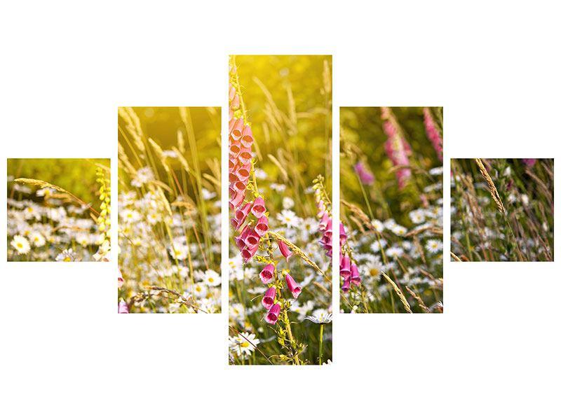 Hartschaumbild 5-teilig Sommerliche Blumenwiese