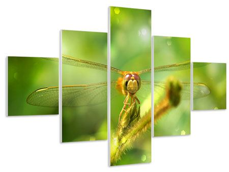 Hartschaumbild 5-teilig XXL-Libelle
