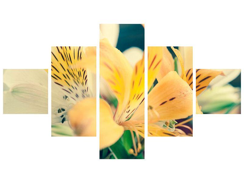 Hartschaumbild 5-teilig Tigerlilien