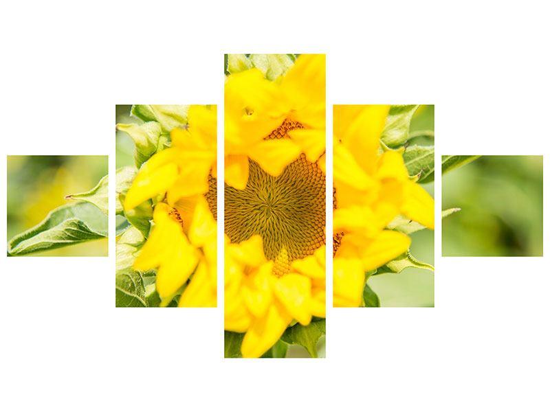 Hartschaumbild 5-teilig Wilde Sonnenblume
