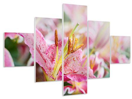 Hartschaumbild 5-teilig Lilien im Tau