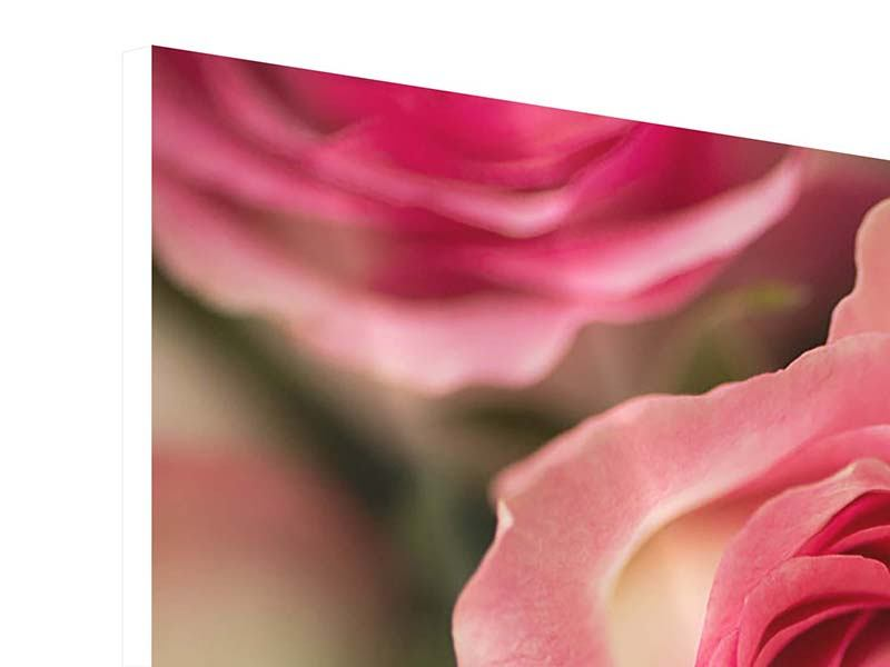 Hartschaumbild 5-teilig Rosenliebe
