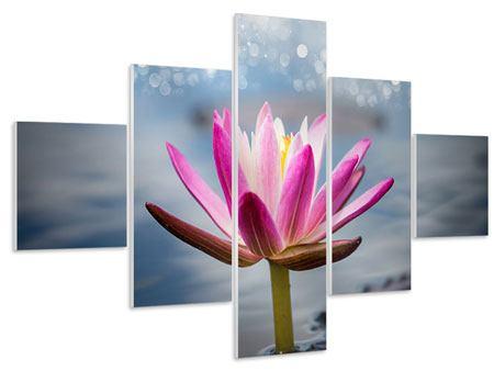 Hartschaumbild 5-teilig Lotus im Morgentau