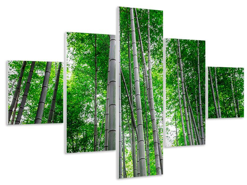 Hartschaumbild 5-teilig Bambuswald