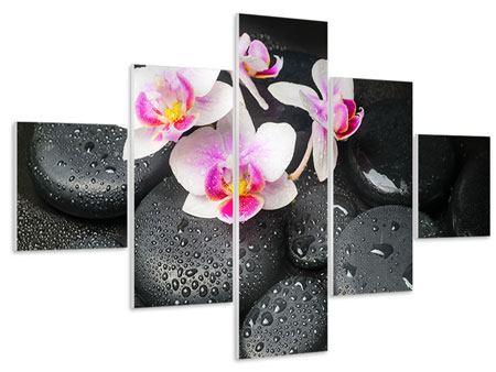 Hartschaumbild 5-teilig Feng-Shui-Orchidee Zen