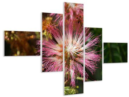 Hartschaumbild 5-teilig modern Die Regenbaumblüte