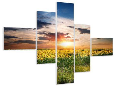 Hartschaumbild 5-teilig modern Ein Feld von Sonnenblumen