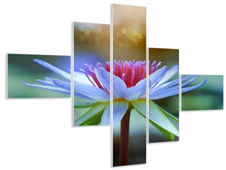 Hartschaumbild 5-teilig modern Pretty Lotus