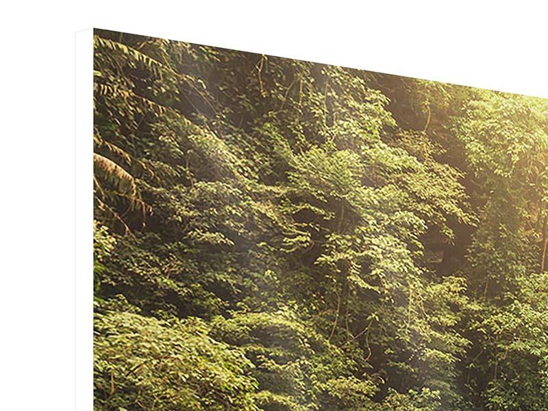 Hartschaumbild 5-teilig modern Wasserfall Bali
