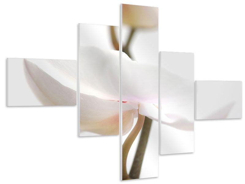 Hartschaumbild 5-teilig modern XXL Orchideenblüte