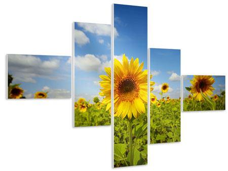 Hartschaumbild 5-teilig modern Sommer-Sonnenblumen
