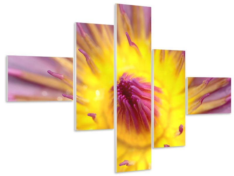 Hartschaumbild 5-teilig modern XXL-Lotus