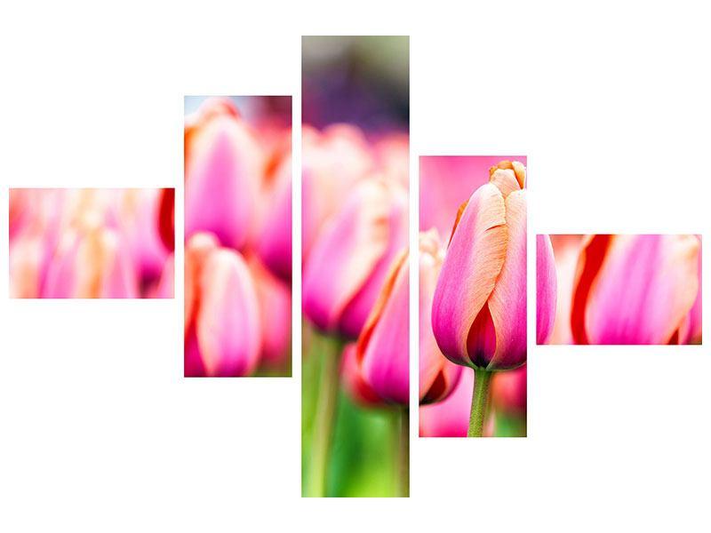 Hartschaumbild 5-teilig modern Pretty in Pink