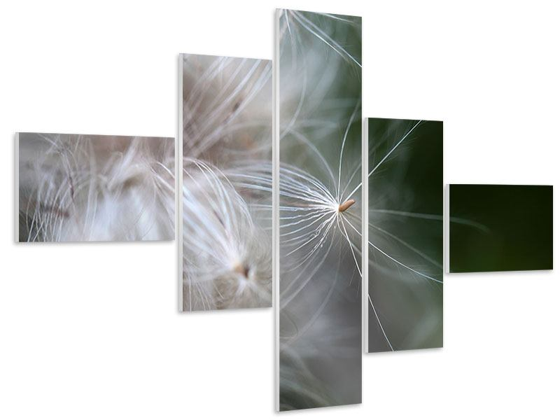 Hartschaumbild 5-teilig modern Close up Blütenfasern