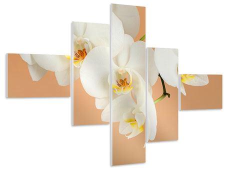 Hartschaumbild 5-teilig modern Weisse Orchideenblüten