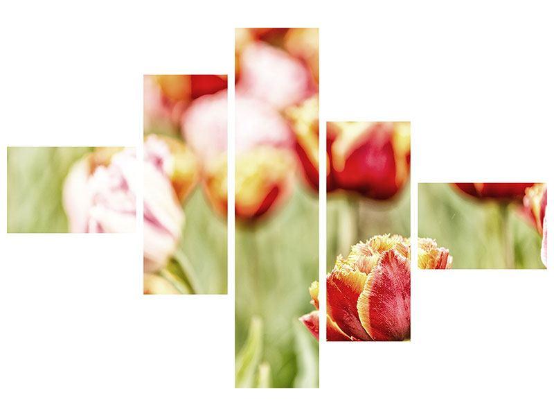 Hartschaumbild 5-teilig modern Die Schönheit der Tulpe