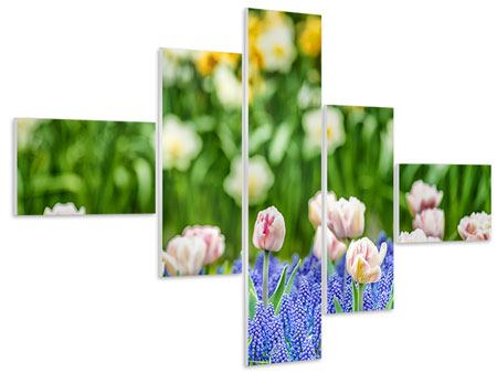 Hartschaumbild 5-teilig modern Ein Garten mit Tulpen