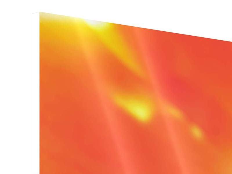 Hartschaumbild 5-teilig modern Die Narbe einer Tulpe XXL