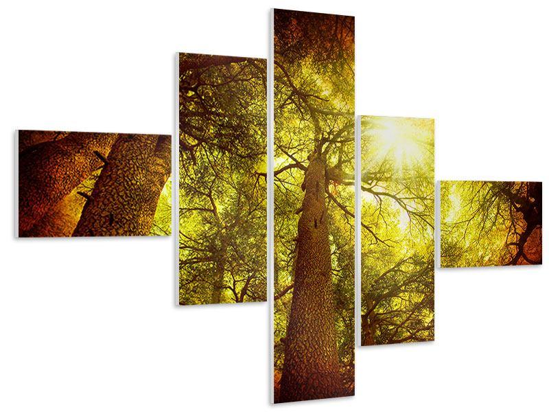 Hartschaumbild 5-teilig modern Cedar Baum